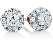 Michael Hill Designer Allegro Stud Earrings with 1/2 Carat TW of Diamonds in 14kt White & Rose Gold