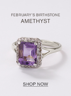 FEBRUARY'S BIRTHSTONE. AMETHYST. Shop now.