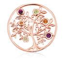 Citrine, Peridot, Rhodolite & 10kt Rose Gold Tree Coin Locket Insert