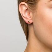 5mm Ball Stud Earrings in 10kt Yellow Gold