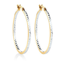 Hoop Earrings in 10kt Yellow & White Gold